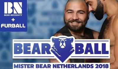 Mr. Bear Elections 2018
